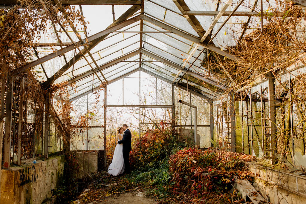 sesja ślubna w stalowowolskich szklarniach
